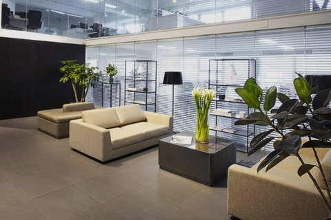 Office with cream sofas and black table with plants